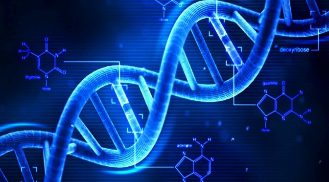 Why You Should Take DNA Test Now